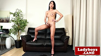 Asian ladyboy, Jerk
