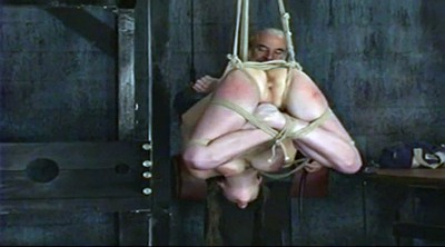 Whip, Whips, Whipping, Suspended