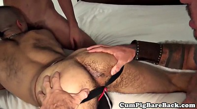 Kiss, Foursome, Bedroom, Gay kiss, Foursome anal