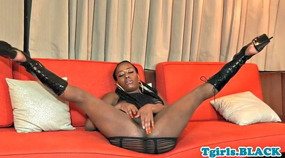 Trans, Spreading, Close, Ass spreading, Ebony solo, Ebony shemale