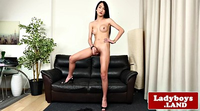 Ladyboy, Tease, Ladyboy solo, Asian striptease, Asian shemale, Teasing