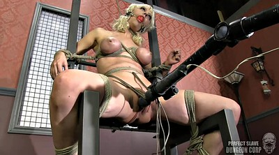 Vibrator, Tied, Tied up