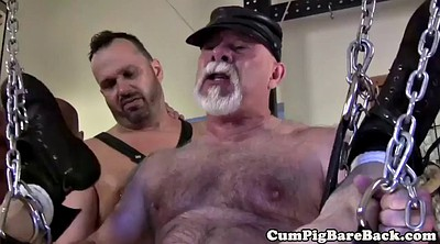 Bear, Shoes, Gay bear, Group masturbation