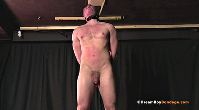Bdsm gay, Teen blowjob