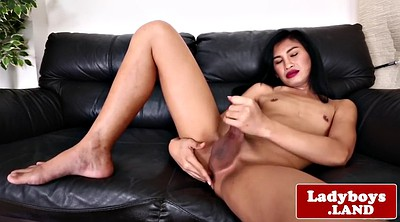 Ladyboy, Asian ladyboy, Shemale ladyboy, Asian solo, Asian shemale solo