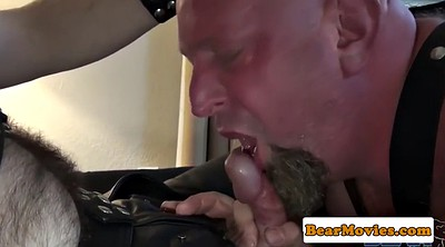 Mature ass, Hairy anal, Mature gay, Bear gay, Hairy matures, Hairy gay