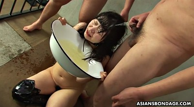 Pissing, Japanese bdsm, Piss latex, Gag, Japanese pissing, Japanese piss