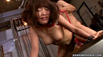 Japanese bdsm, Slave, Cute anal