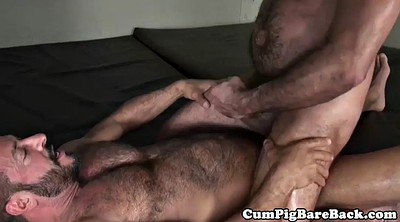 Bear, Hairy mature masturbation