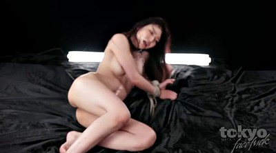 Tit, Aoi, Japanese throat, Japanese deep