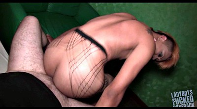 Thai anal, Ass, Pantyhose shemale, Asian pantyhose, Shemale pantyhose, Pov ass