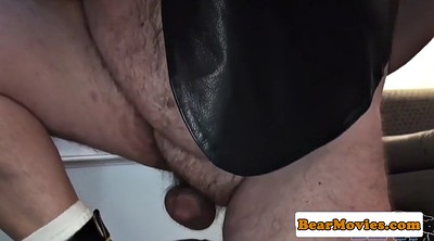 Mature, Hairy anal, Bear, Mature anal threesome, Mature hairy anal, Mature chubby