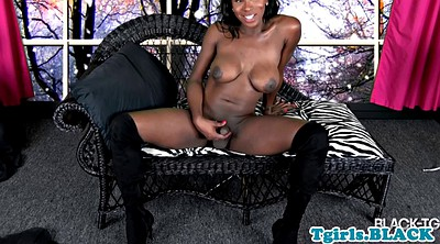 Shemale masturbating, Jerking, Shemale big, Black tranny, Big cock tranny, Amateur tranny