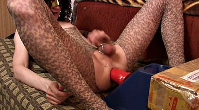 Sissy, Riding dildo, Plug