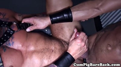 Leather, Piercing, Gay bareback, Hunk cumshot