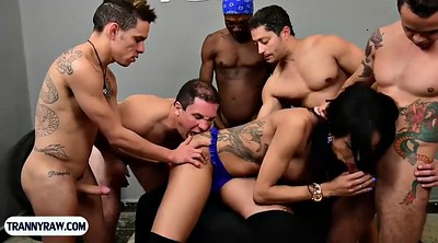 Beautiful, Group anal, Shemale gangbang, Beautiful shemale, Tranny gangbang, Shemale group