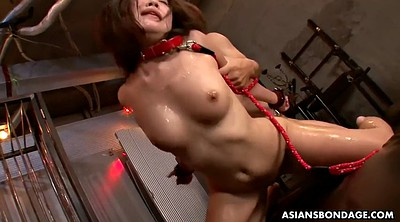 Japanese bdsm, Japanese anal, Asian slave, Japanese bukkake, Japanese slave, Asian threesome