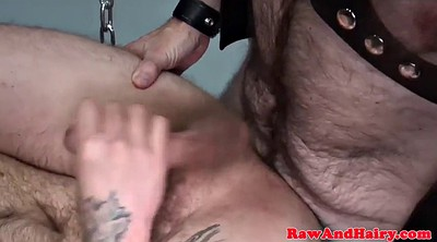 Bear, Mature hairy, Hairy mature anal, Beard, Bear gay