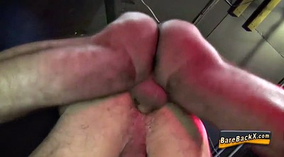 Hd anal, Bear gay, Muscle bear
