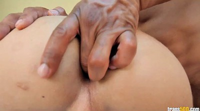 Latina interracial, Holed, Shemale interracial, Shemale fucking