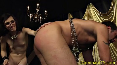 Domination, Lick ass, Shemale domination, Shemale bdsm, Dominate