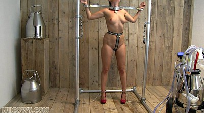 Milk, Milking, Bound, Tit torture
