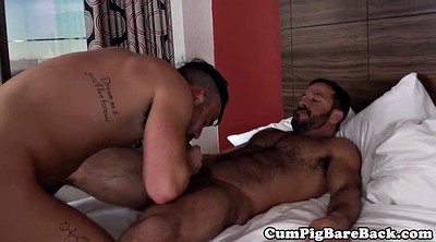 Gay bear, Bears, Black bear, Bbc gay