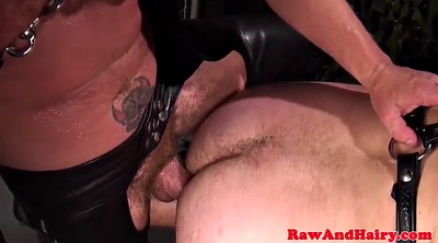 Leather, Bears, Hairy anal, Chubby bear, Doggy anal, Hairy bear