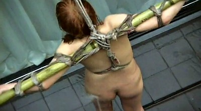 Japanese bondage, Nipple, Water, Tie, Japanese nipples, Asian tied