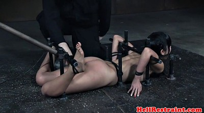 Submissive, Submission, Marica hase