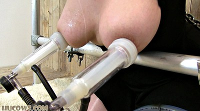 Milk, Bdsm fat, Fat bdsm, Milking, Bondage fat, Bdsm bbw