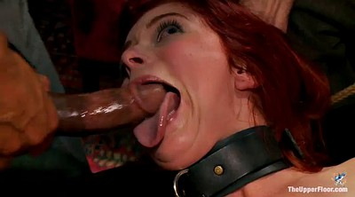 Group bdsm, Group anal, Asshole, Pets, Pet, Anal insertions