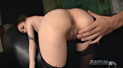 Japanese anal, Japanese tit, Japanese throat, Japanese group
