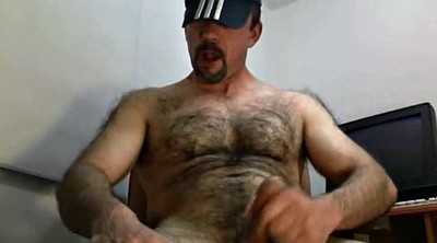 Bear, Hairy gay, Bear gay
