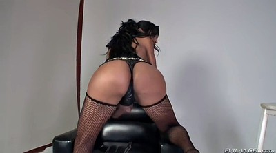 Bbw tranny, Tranny solo, Fat tranny, Big cock shemale, Big ass shemale, Bbw shemale
