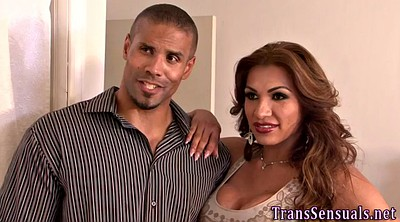 Trans, Threesome shemale, Shemale threesome