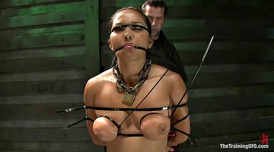 Asian tit, Training, Bdsm asian