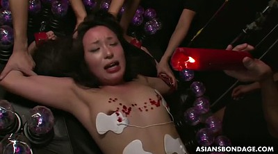 Torture, Wax, Asian tits, Anna, Waxing