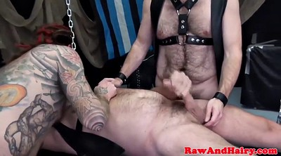 Bear, Gay mature, Two cocks, Two cock, Hairy group, Chubby gay