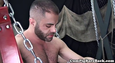 Licking, Ass mature, Gay mature, Gay bear