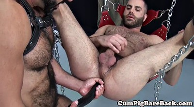 Leather, Trio, Gay leather, Suspended, Bear masturbation