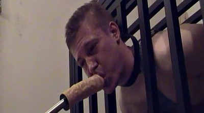 Gay sex, Tied up, Gay bdsm, Bdsm gay, Twink young, Learn