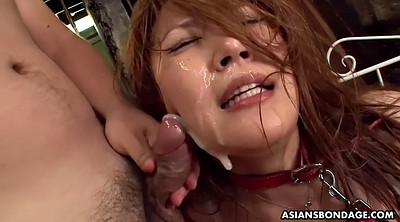 Japanese bdsm, Japanese anal, Japanese gangbang, Asian double, Japanese bukkake, Japanese big