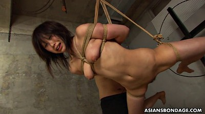 Tied, Asian bdsm, Rope, Asian tied, Asian bondage