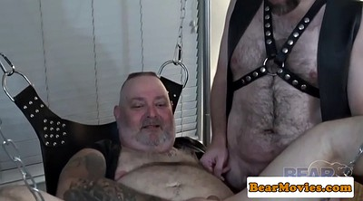 Mature gay, Mature group, Fat mature, Fat gay, Bear gay, Mature threesome