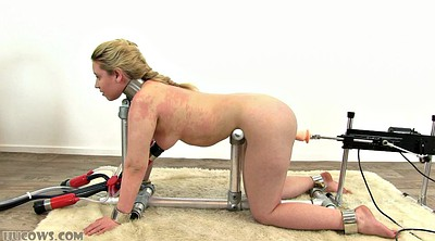 Milk, Tit tied, Machine bondage, Milking machine, Milking fuck