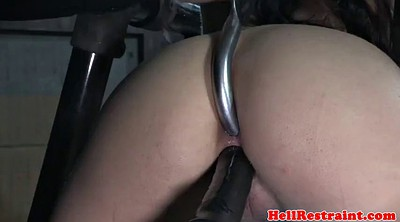 Whipping, Toy, Whip, Whipped