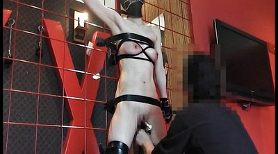 Japanese bondage, Japanese bdsm, Whip, Whipped, Bdsm japanese, Whipping