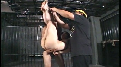 Bdsm japanese, Japanese bdsm, Japanese bondage, Bdsm asian, Tied up