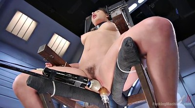 Tie up, Machines, Sybian, Hairy solo
